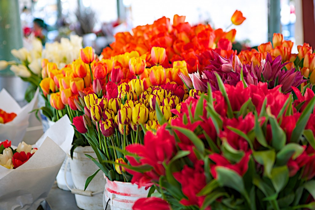 Tulips Pike Place Market