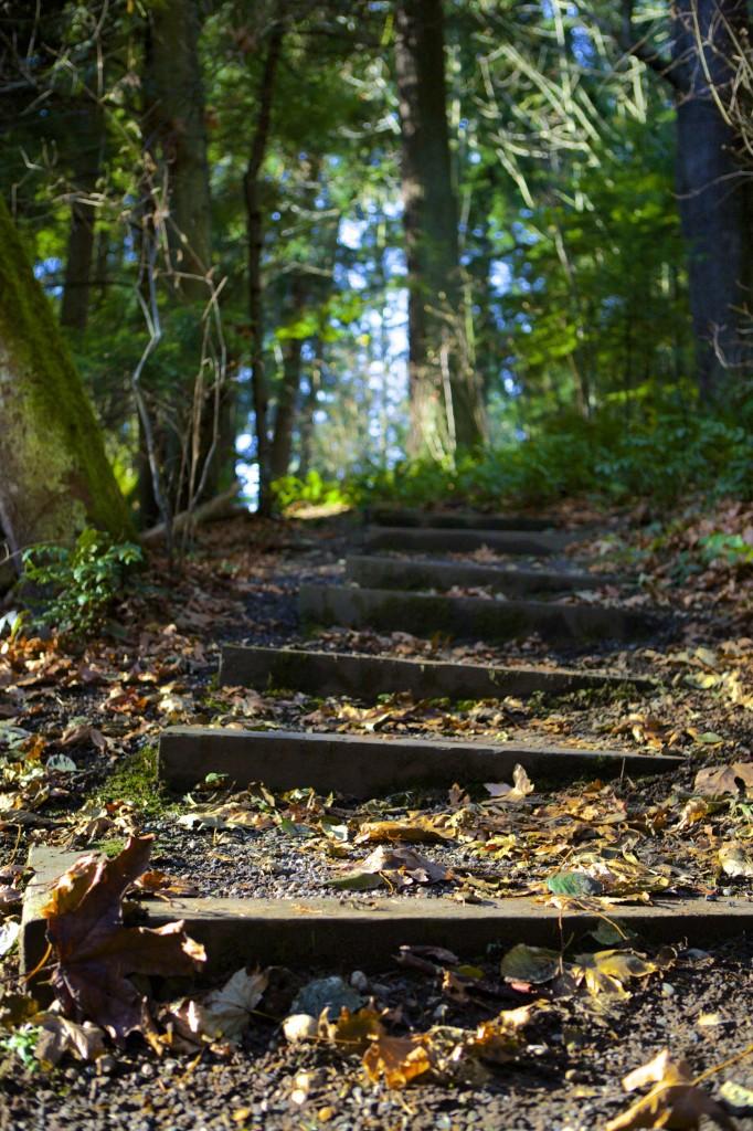 Carkeek Park Seattle