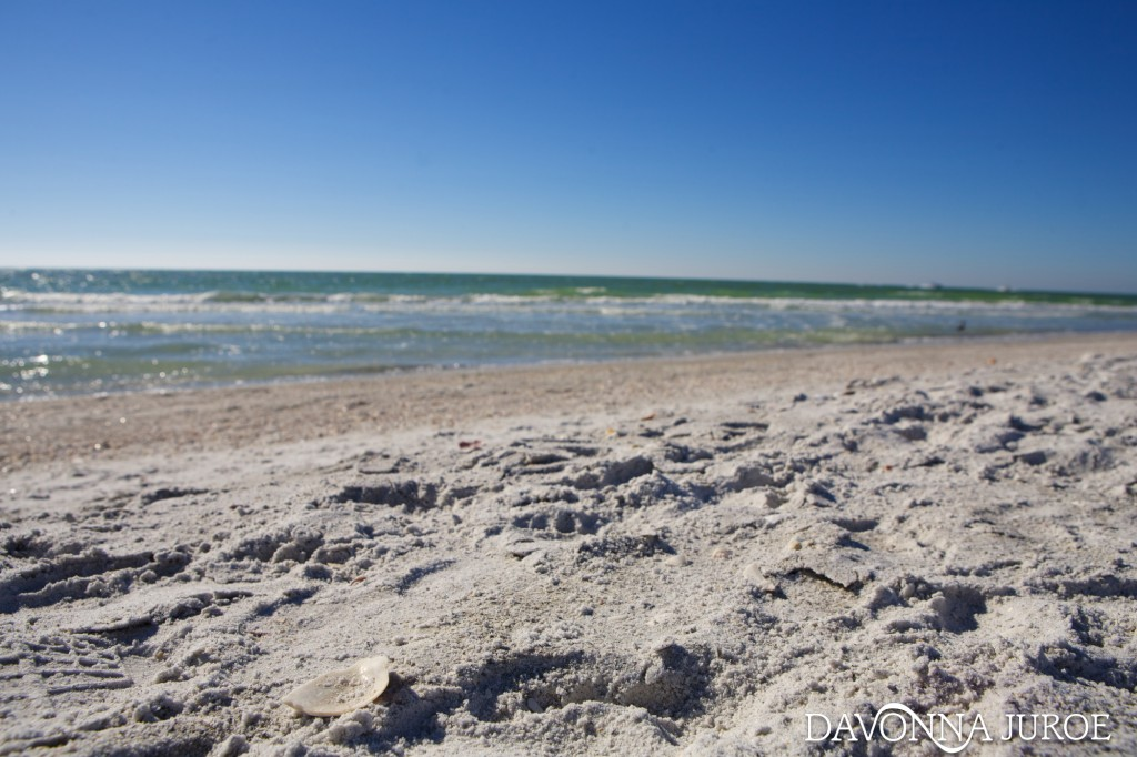 white sand beach, florida